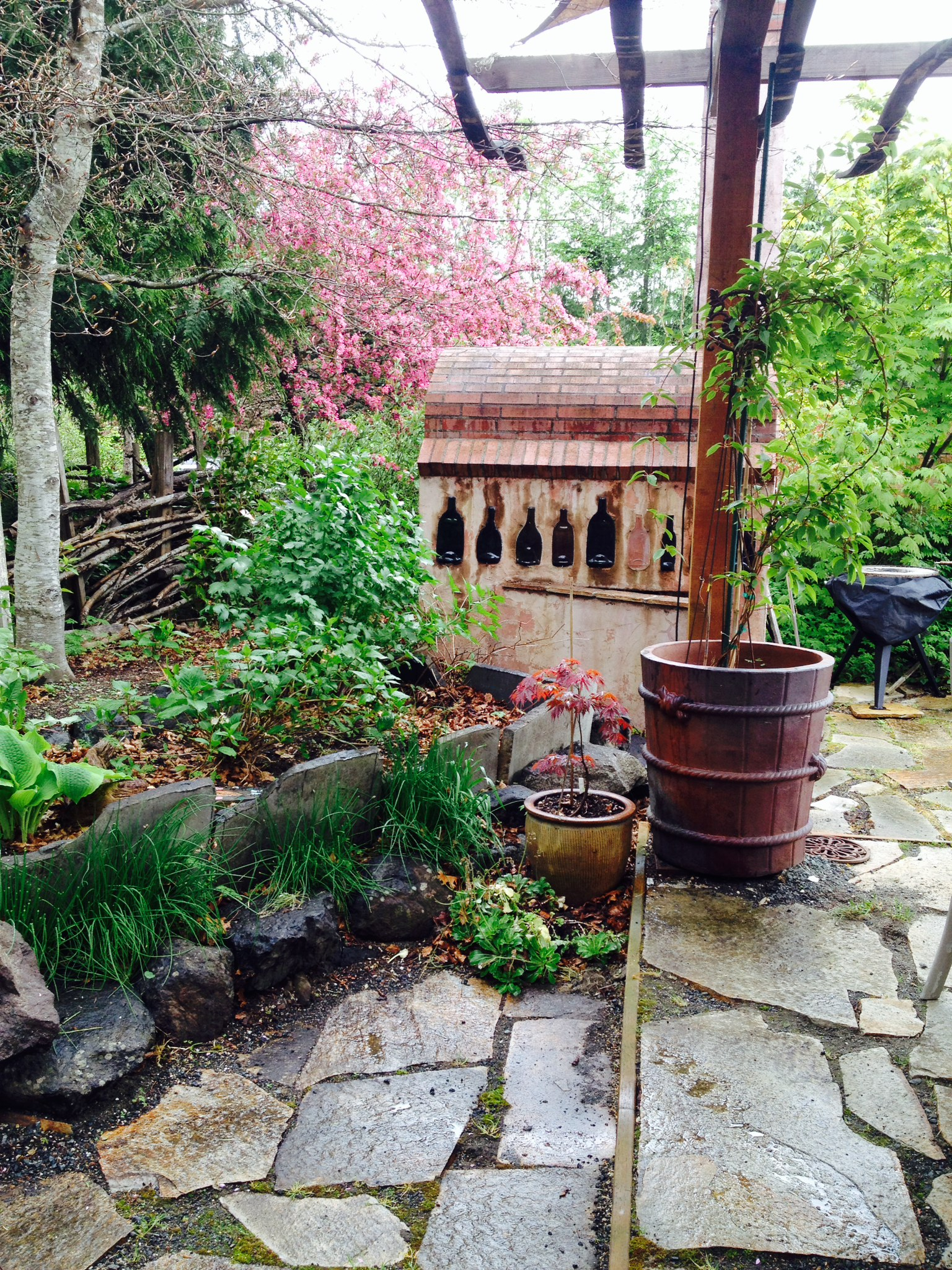Backyard Vineyard Ideas : wine cellars yard backyard diy ideas for garden flowers greenery wine