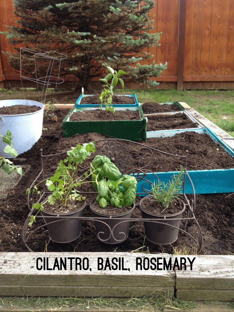 How to make a raised vegetable garden of repurposed drawers. Recycle or reuse household items to make a unique backyard. what to plant in herb garden. | bexbernard.com