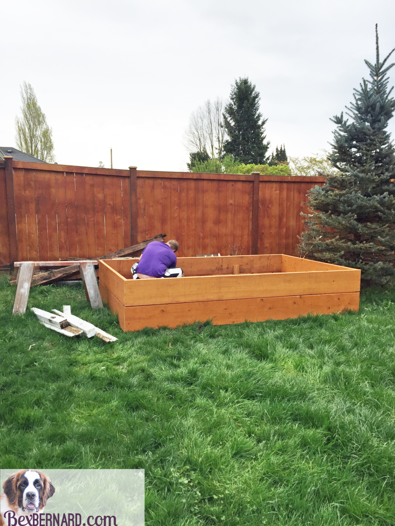 how to make a raised bed garden with wood | bexbernard.com a home blog
